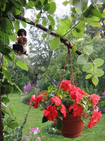 Идеи для сада! Красивый сад!